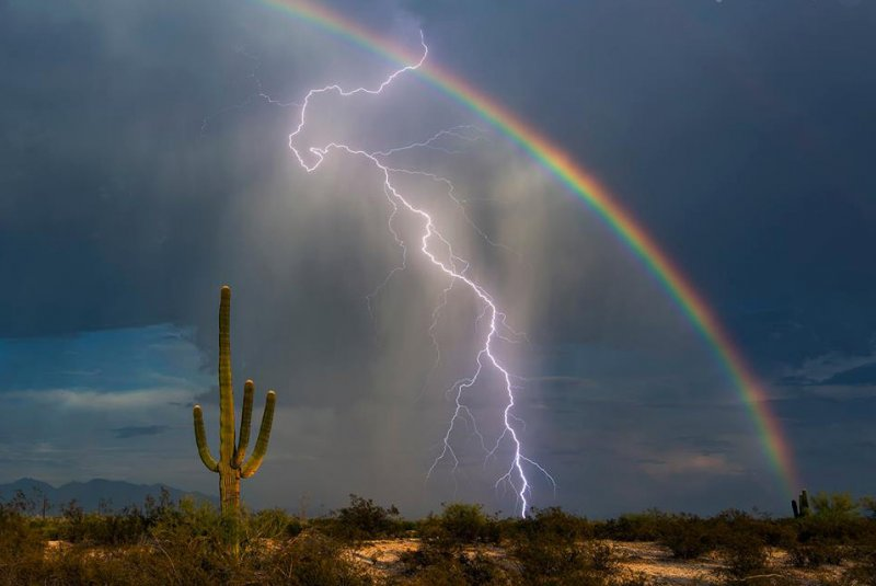 how-to-protect-your-home-from-damaging-power-surges-caused-by-our-monsoon-season-s-lightening-storms