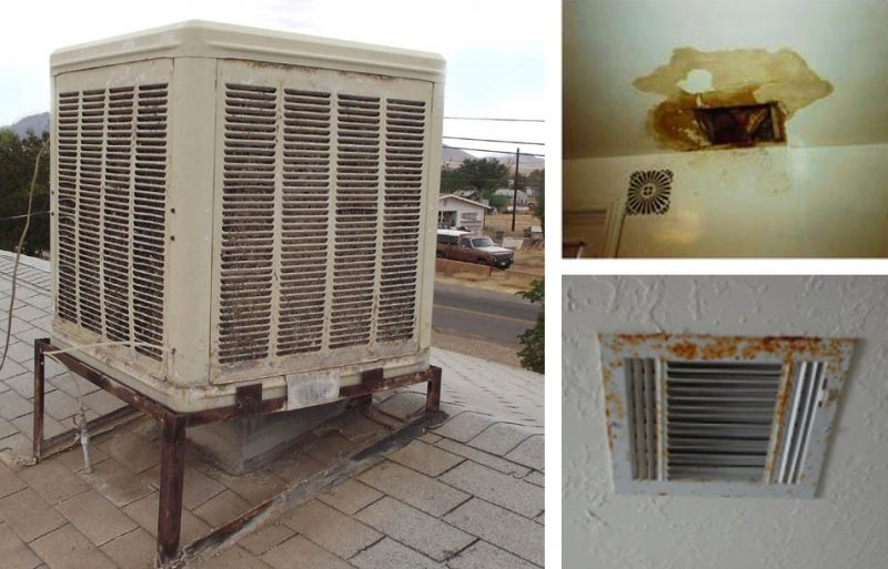 mosquitos-in-your-house-they-could-be-coming-from-the-evaporative-cooler